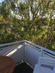 Blick_vom_Balkon